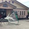 球速UPプロジェクト MAX144キロ【途中経過】大学生野手編の画像