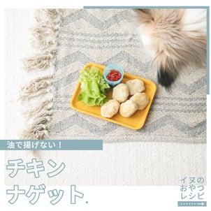 犬のおやつに揚げないチキンナゲットを作ってみよーう(いぬのきもち掲載手作り犬おやつレシピ)の画像