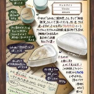 「chicu.雑記帖」楽天市場Parejaさんにて7月号掲載中の画像