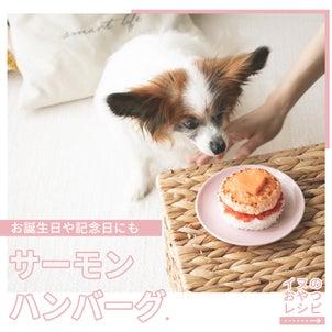 犬の誕生日にもおすすめ◎サーモンのハンバーグレシピ(いぬのきもち掲載 手作り犬おやつレシピ)の画像