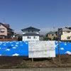 泉区の大矢養鶏場さんの卵とツバメ暴走族(笑)の画像