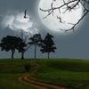 満月と地場の関係と満月の運気の画像