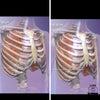 助産師おススメ❣️産前産後のセルフケア 「深呼吸②」の画像