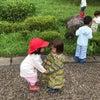 7/9  ☆やまもも組さん☆  手を繋ぐっていいね!の画像