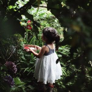 庭での画像