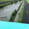 川と傘の画像