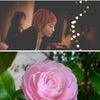 【花として咲くために言語化する】〜全開に生きる作法の画像