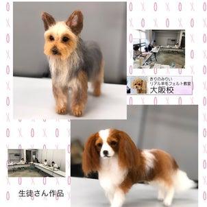 大阪羊毛フェルト教室が再開しましたの画像