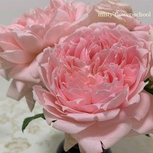 花びらがすごくキレイの画像