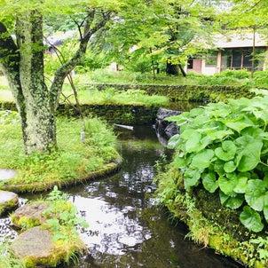 【イベント告知】富山:二人展開催 10月(2020.9.16.更新)の画像