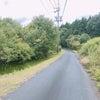 大型フクロウの散歩コースの画像