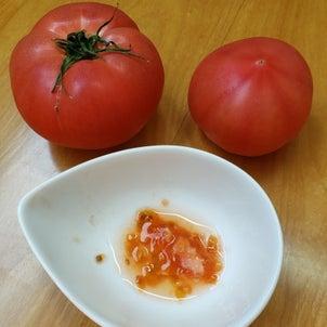 トマトとオクラで中学受験の基礎固めの画像