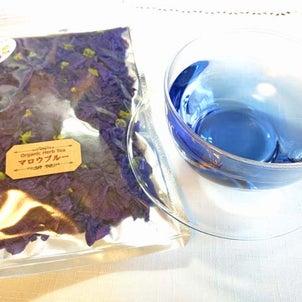 今年収穫のマロウブルーのハーブティー、販売スタートしました。の画像