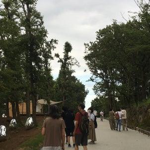 ★チームラボ どんぐりの森の呼応する生命 光と音と自然のアート 『武蔵野樹林パーク』の画像
