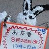 お店番、じゃわ〜! 8月28日(金)吉祥寺「ブックマンション」♪の画像