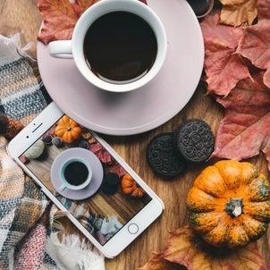 秋に食べると上がる食べ物。の画像