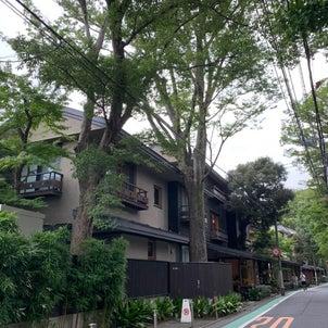 木々融合建築の画像
