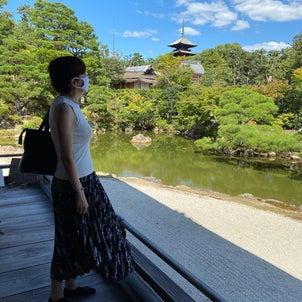久々の京都。龍安寺と仁和寺、全然違う古刹を満喫。思ったより人は多かったの画像