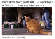 地中海の猫たちにまた会える――「岩合光昭の世界ネコ歩き」総集編が1/5放送