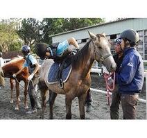 千葉県・八街市の高校が、生徒に「競走馬」を育てさせる授業を開始