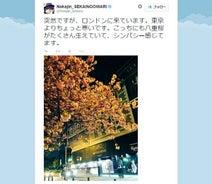 セカオワNakajin ロンドンで満開の桜公開「シンパシー」