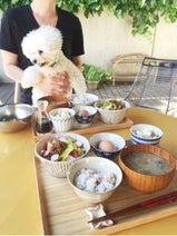 安田美沙子が夫とのテラスでの朝ごはんに幸せを感じる
