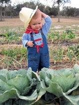 マンネリ週末から脱却! 子連れで週末農業体験