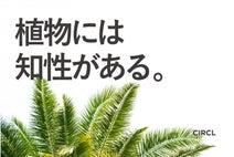 植物には知性がある?世界の研究者が見つけた、知られざる植物の能力