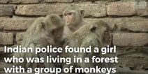 インドのジャングルでサルと暮らしていた少女が救出される