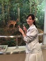 新川優愛、ドラマ『櫻子さん』の撮影で博物館へ「ぐるぐる一人で見てまわっています」