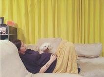 安田美沙子 出産間近、臨月でお腹が重く「動けない」姿公開