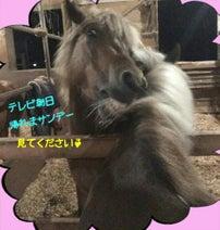 佐藤藍子 『帰れまサンデー』苛酷ロケに「…頑張って来ました!」