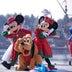 今年も最高のクリスマスを 東京ディズニーシーで実現するロマンティックなクリスマス