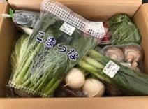保田圭、初めてのふるさと納税 返礼品の野菜に大喜び