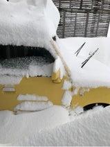 高橋愛、地元・福井の大雪に心痛「車も動かせない状態」
