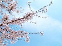 【米国発】学校を休んで日本への里帰りを先生に伝えたところ……?