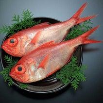 キンメダイやアマダイはタイではない!?タイという名がつく魚の謎に迫ってみた!