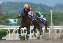 「盛岡競馬」「水沢競馬」の全レース生中継を「ニコニコ競馬チャンネル」で開始
