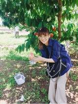倉科カナ、桃狩りを楽しむ様子を公開「美味しそう~」「羨ましい」の声