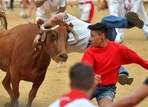 伝統の「牛追い」