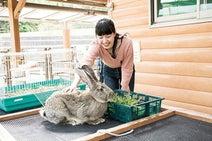 近いがうれしい!福岡・海の中道&志賀島で遊び倒すアウトドアプラン