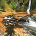 滝と紅葉がつくり出す絶景!三重が誇る大自然の共演を満喫しよう