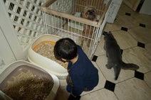 三田佳子、孫が自宅に緊急避難 初めてのひとりお泊りに「オネショしないよ」