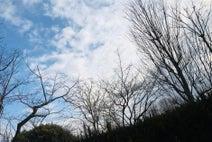 古村比呂、抗がん剤治療休止中の心境をつづる「正直 ホッとしています」