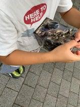 山川恵里佳、6歳の息子が興味を持ったものにしみじみ「男子っぽいよねー」