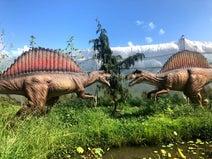 """釈由美子、元気になった息子と""""恐竜ごっこ""""「回復力と底なしのエネルギーには脱帽」"""