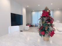 アレク、妻が選んだクリスマスツリー「うちのリビングインスタ映えしてるわ」