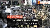 エイプリルフール2020まとめ(更新中)