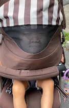 金田朋子、ベビーカーに乗る娘の姿を公開「心霊写真ではありません」