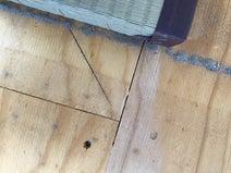 畳の下は黒カビとホコリの山!想像以上の汚れを掃除してみた